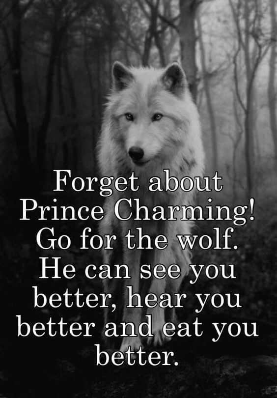 Forget about Prince Charming! Go for the wolf. He can see you better, hear you better and eat you better.