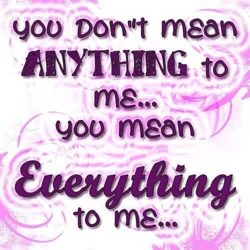 You Don't mean anything to ME....You Mean Everything to ME
