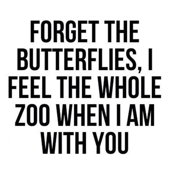 Forget The Butterflies , I Feel The Whole Zoo When I am With You